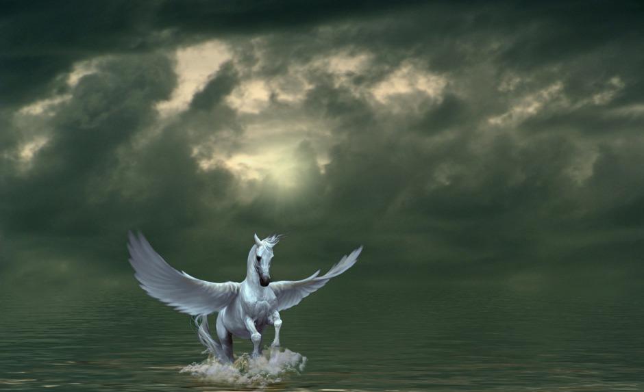 Pegasus - dem Leben Flügel verleihen